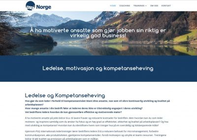 Website for Ledesle og prestasjon in Norway