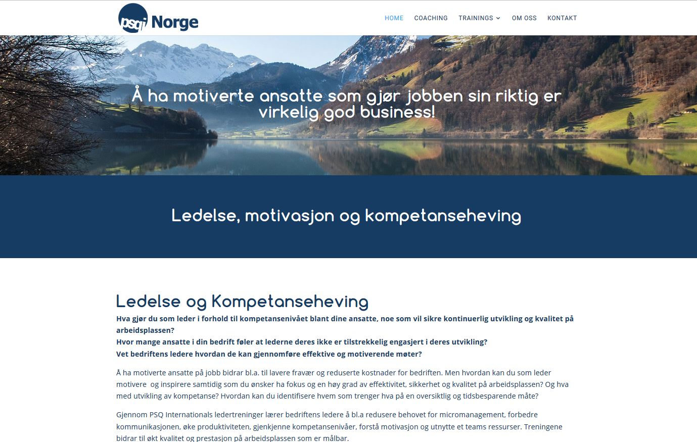 Website for ledelse og prestasjon in Norway