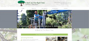 website_design_treesurgeon