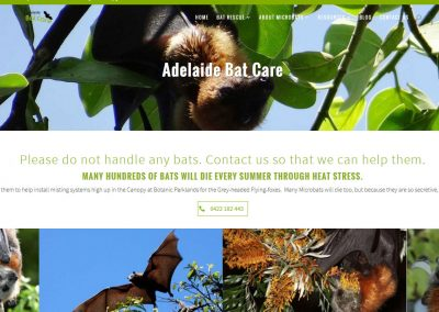 Adelaide Bat Care new website