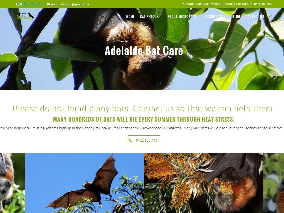 Adelaide Bat Care new website