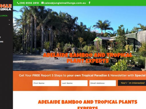 Website Design for Jungle in Willunga
