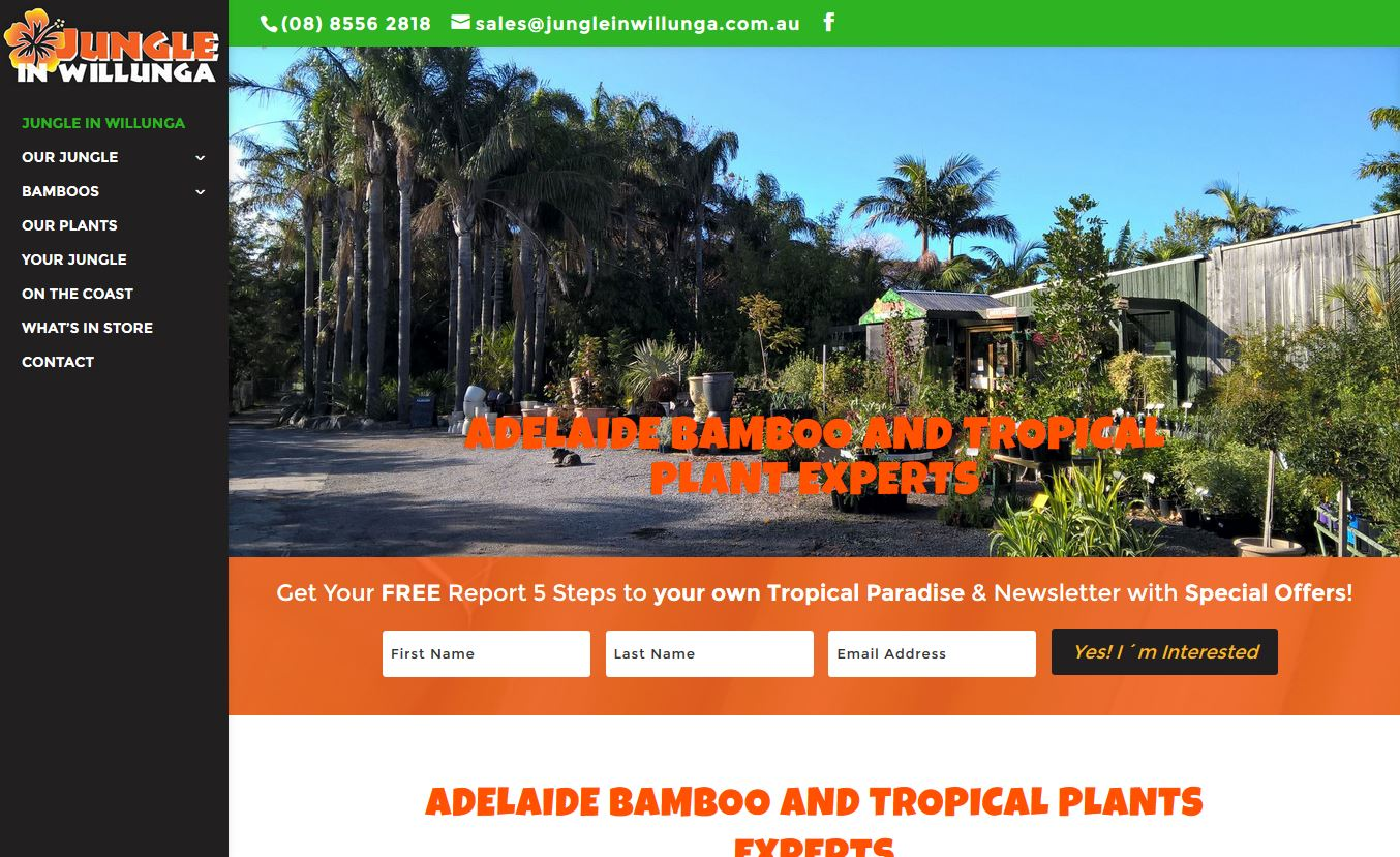 Website design for Jungle in Willunga, South Australia Bamboos