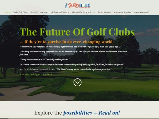 Website for The Party Hole