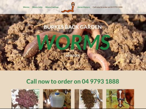 Worms for sale in Adelaide