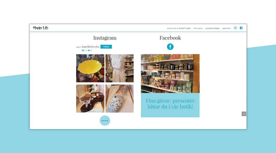 instagram feed on your website