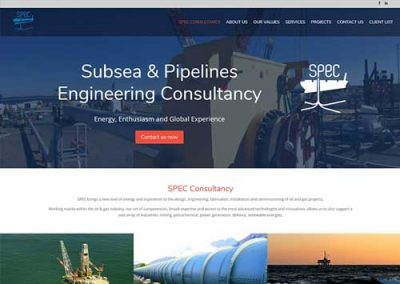 Website design for Spec-consultancy
