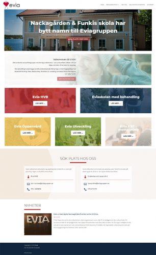 website design evia