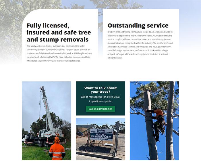 website design mclaren vale business bradleys tree